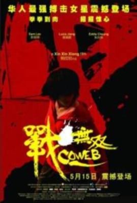 Паутина лжи / Zhang wu shuang (2009) онлайн фильм