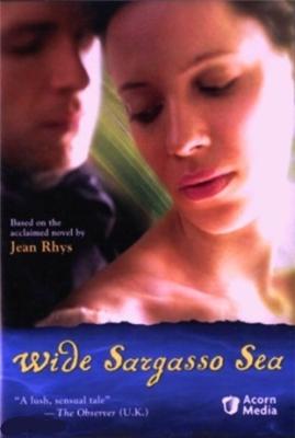 Широкое Саргассово море (2006) DVDRip онлайн