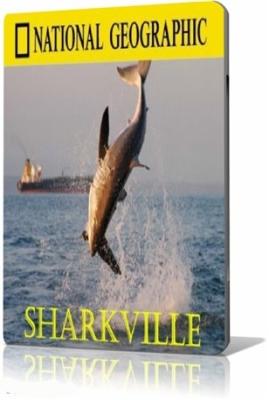 Акулоград / Sharkville (2008) SatRip онлайн