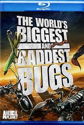 Самые большие и страшные жуки в мире (2004)